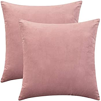 Amazon.com: MIULEE Pack of 2, Velvet Soft Soild Decorative ...