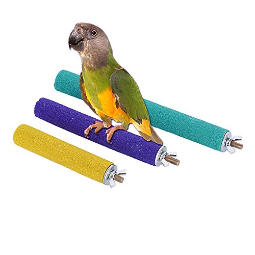 Bird Safety Perch - PIVBY Wood Bird Cage Perch Colorful Parrot Stand Toy Platform Paw Grinding Stick for Amazon Parrot Bird Colors Vary Pack of 3