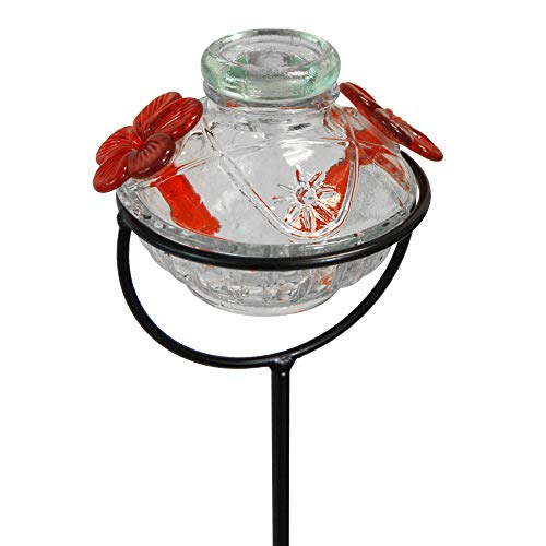 BestNest Parasol Pot de Creme Staked Hummingbird Feeder, Clear, 8 oz. (Staked Hummingbird Feeder)