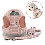 Print Plaid Pet Harness Vest and Leash Set for Small Breed Dog Cat Reflctive Soft Nylon Mesh Padded Jacket 2 D-Ring Buckle Adjustable for Walking Hiking Outdoor Puppy Clothes,Pink S