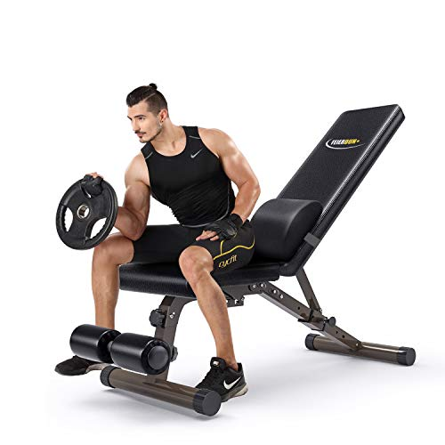 FEIERDUN Adjustable Workout Bench,Foldable Weight Benches Multi-Purpose Utility Decline/Incline Bench with Cushion