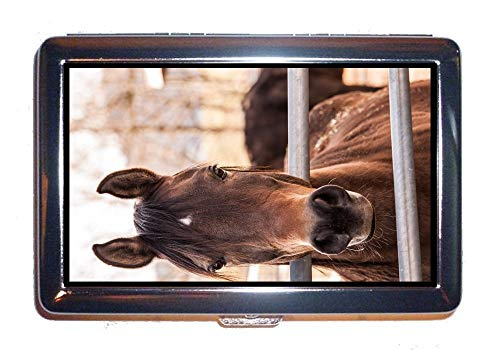 Wallet or Cigarette Case,Animal Animal Photography Horse,Protection Credit Business Card Holder Case
