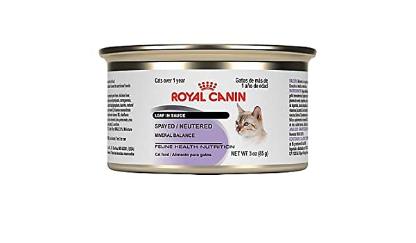 Amazon.com : Royal Canin Feline Health Nutrition Adult Spayed/Neutered Loaf in Sauce Canned Cat Food, 3 oz, Case of 24 : Pet Supplies