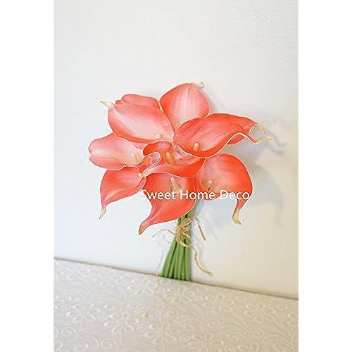 Coral Color Flowers Amazoncom