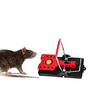 rulankeji mouse traps quick kill that work best for small mice mouse pack of 4. Black Bedroom Furniture Sets. Home Design Ideas