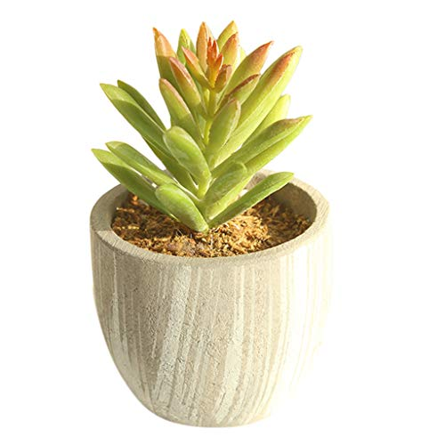Mikilon Mini Artificial Succulents Picks Potted Faux Succulent Assortment in Flocked Green in Different Type Different Size Succulents Echeveria Agave Floral Arrangement Mother Day' s Gift (A)