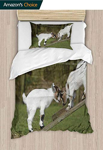 Animal Diy Quilt Cover and Pillowcase Set, Two Cute Little Baby Goats on a Bench Fighting with Their Horns Picture Image, Decorative 2 Piece Bedding Set with 1 Pillow Sham, 47 W x 59 L Inches