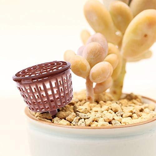 Gwxevce 10 Pcs Bonsai Outil Couverture D'engrais Panier Boîte Plant Bug Portable Pépinière Pot