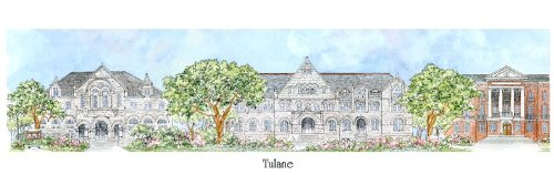 Tulane University - Collegiate Sculptured Ornament by Sculptured Watercolor Ornaments
