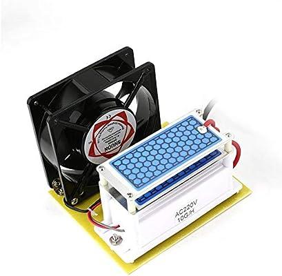 Libertroy Generador de ozono de 10 g/h Placa de cerámica Doble ...