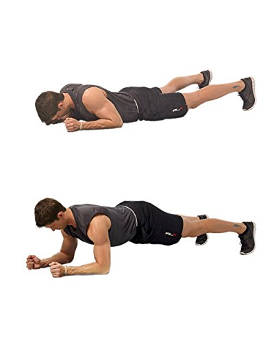 bodyweight workout routine for mass pdf