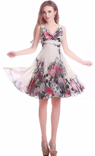 Cohaco Women's Floral Print A-Line Dress Short Chiffon Party Gown with Groves (US 4, V-neck : White)