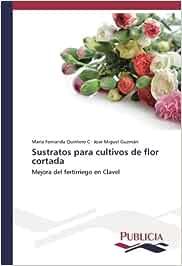 Sustratos para cultivos de flor cortada: Mejora del fertirriego en Clavel