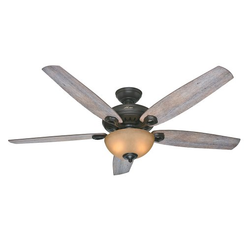 "Hunter Valerian 60"" Ceiling Fan Brittany Bronze 54062"
