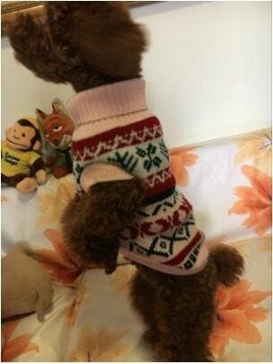 Rantow Pet Holiday Clothes Dog Cat Sweater Dog Warm Coat Cute Jumper Autumn Winter Clothes Dog Clothes Grey M