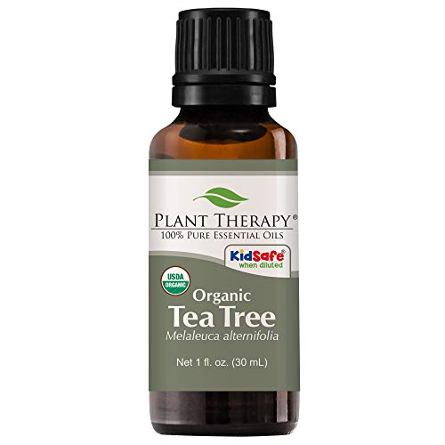 Plant Therapy Tea Tree Organic Essential Oil | 100% Pure, USDA Certified Organic, Undiluted, Natural Aromatherapy, Therapeutic Grade | 30 milliliter (1 ounce)