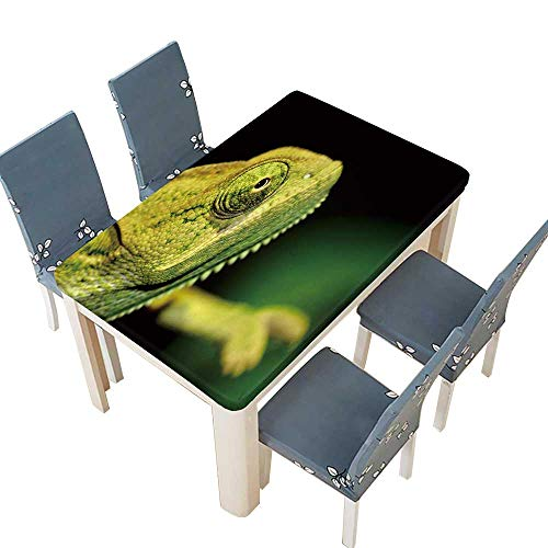 PINAFORE Fitted Polyester Tablecloth  Portrait of a Male Veiled Chameleon (chameleo calyptratus) from Yemen for Indoor and Outdoor Use W73 x L112 INCH (Elastic -