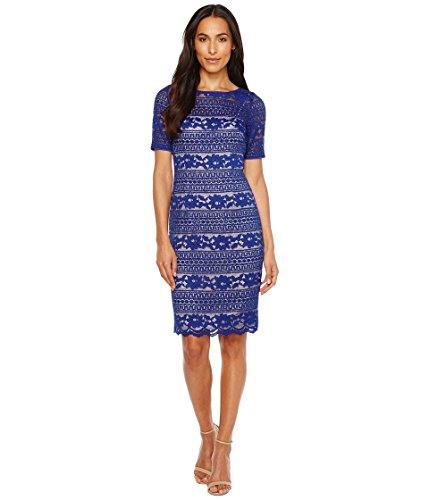 ハンサム推測行為[アドリアナパペル] Adrianna Papell レディース Corded Stripe Lace Dress ドレス [並行輸入品]