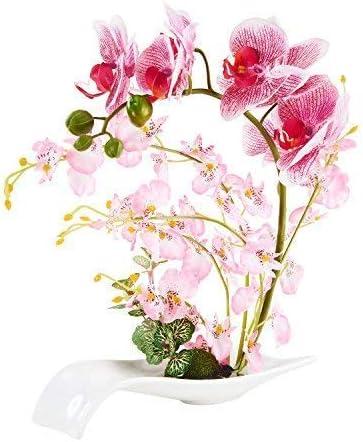 Amazon Com Imiee Artificial Phaleanopsis Arrangement With Vase