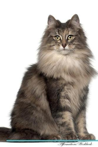 Download Norwegian Forest Cat Affirmations Workbook Norwegian Forest Cat Presents: Positive and Loving Affirmations Workbook. Includes: Mentoring Questions, Guidance, Supporting You. ebook