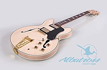 Albatross guitarras gk062 Semi Guitarra Eléctrica Cuerpo Hueco: Amazon.es: Instrumentos musicales