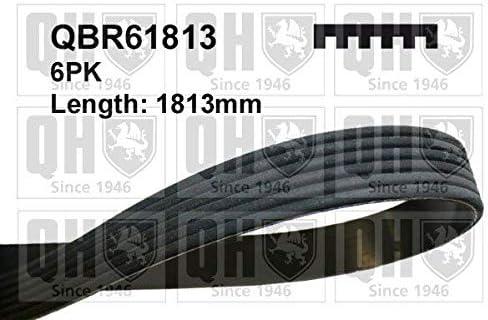 QH QBR61813 Drive Belt