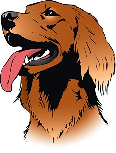 Yetta Quiller Irish Setter Dog Head Home Decal Vinyl Sticker 10 X 14 inches