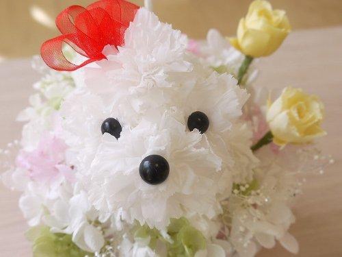 真っ白な犬君。プリザーブドでできた犬くん 『ぷりもこちゃん』 / プリザーブドフラワー B002HW3JDO