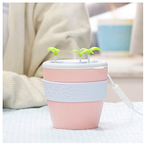 Ceramics Anion Potted Plant Humidifier Portable premium stylish Cute Bear Ultrasonic USB Powered Humidifier for Office Single Room by Sexy_Forever
