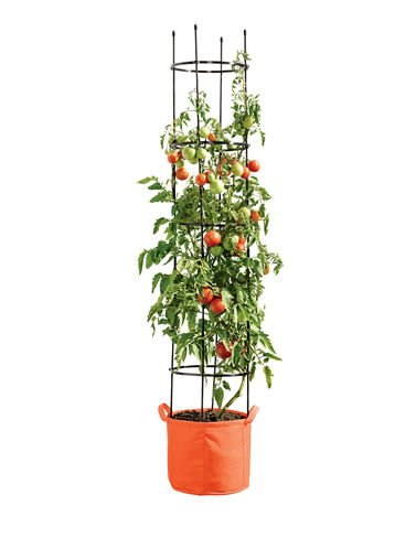 Gardeners Best Tomato Grow Bag