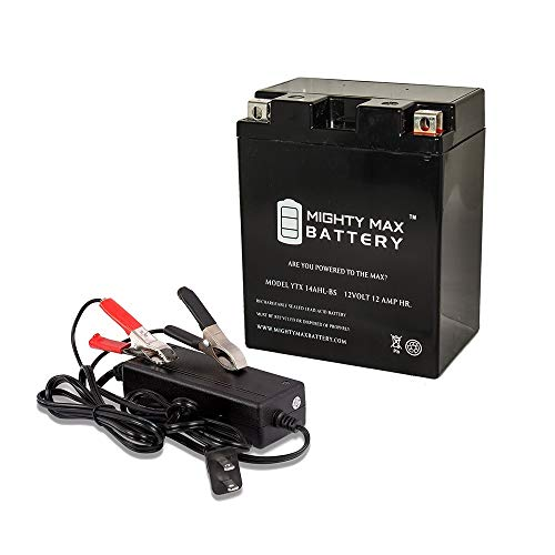 - Mighty Max Battery YTX14AHL 12V 12AH Battery for Triumph Thunderbird + 12V 2Amp Charger Brand Product