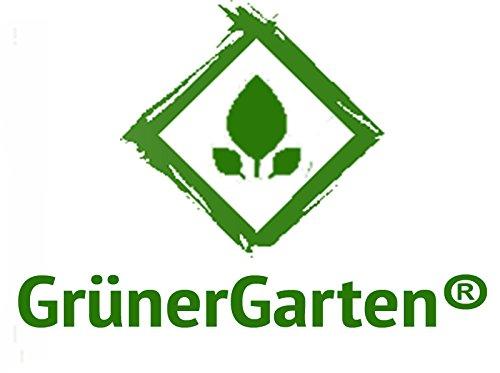 Grunergarten Bio Hochbeet Aus Holzbohlen Gron L 80