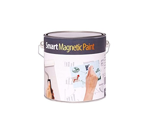 Magnetic Paint 107 ft² by Smarter Surfaces