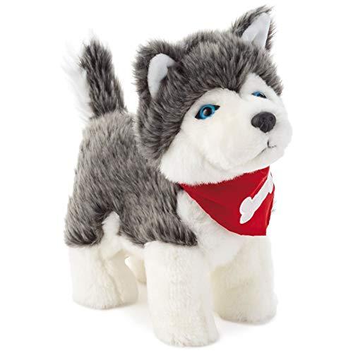 - Hallmark Pet Husky Dog Musical Stuffed Animal with Sound and Motion, 11