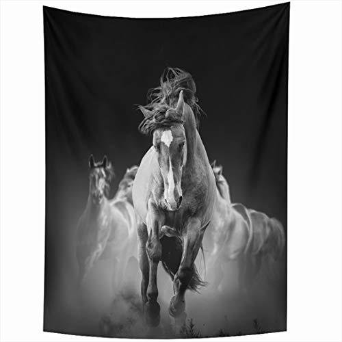 (Ahawoso Tapestry 60x90 Inch Run Black Wild Horses Running Dark Dust Darkness Nature Motion Movement Thoroughbred Herd Wall Hanging Home Decor for Living Room Bedroom Dorm)