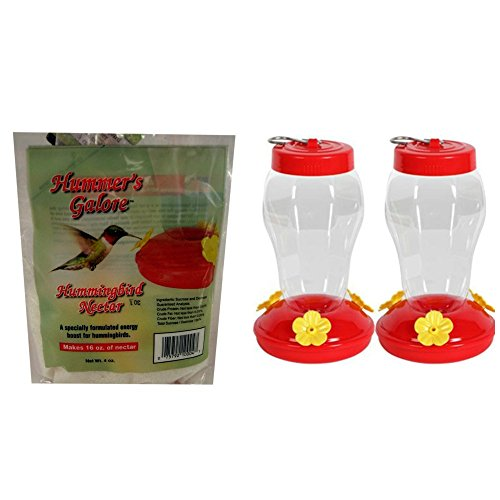 Hanging Hummingbird Feeder Starter Kit 2 Pack Bundle Hummer Galore Nectar (Feeder Hummingbird Kit)