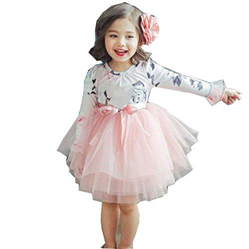 Tutu Princess Casual Dress Printed Puff Long Sleeves For Baby Girl (Pink, 4-5Y)