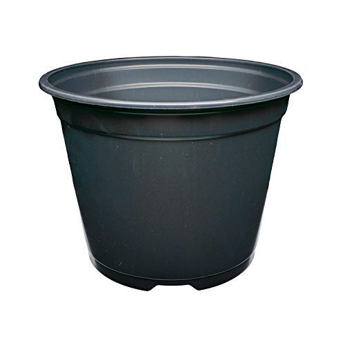 SP600 6'' Round Flower Pots - Made in USA - Reusable, Recyclable - Garden, Hydroponics, Nursery, Farm, Greenhouse (680, Black) by Second Sun Hydroponics