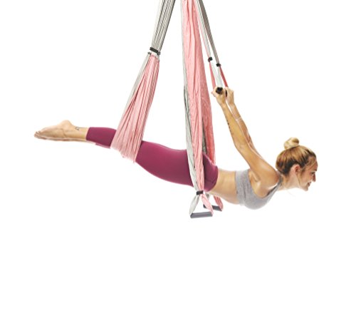 YOGABODY Yoga Trapeze - Yoga Swing/Sling/Inversion Tool (Baby - Trapeze Pink