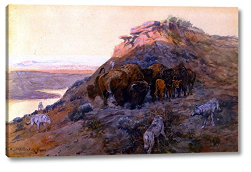Buffalo Herd at Bay by Charles Marion Russell - 9