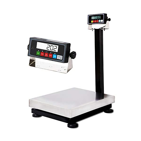 Digital PEC Scale with Stainless Steel Removable Platform