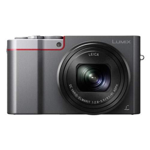 Panasonic LUMIX 4K Digital Camera (Silver) with Case and 64GB SD Card Bundle