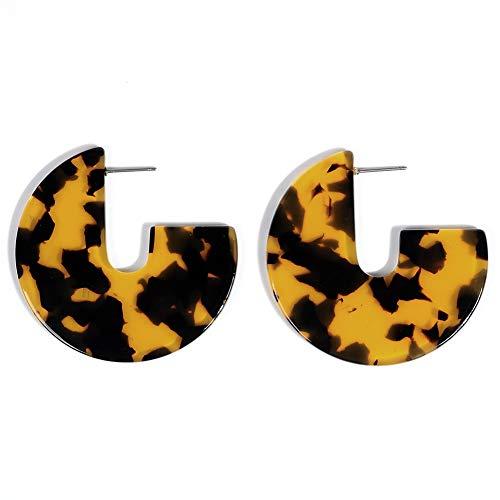 Artilady Acrylic Resin Hoop Earrings - Tortoise Shell Earrings for Women Boho Jewelry, Great for Sister, Friends, Mom (Leopard hoop)