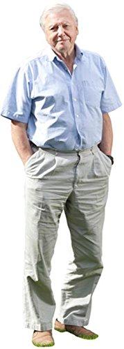 David Attenborough Life Size Cutout Celebrity Cutouts