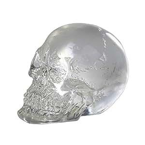(Box of 12) Clear Crystal Like Skulls Figure. Halloween Decor Collectible Mini Figurine.So Cool