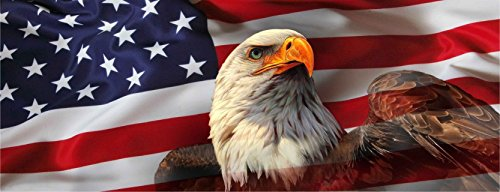 (AMERICAN USA FLAG EAGLE PICK-UP TRUCK BACK WINDOW GRAPHIC DECAL PERFORATED VINYL (Medium 60