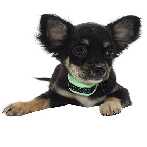 """Our K9 UPDATED !! """"MINT"""" Bark Collar for XS - Small Dogs. Pain Free RECHARGEABLE Bark Control Training Collars."""