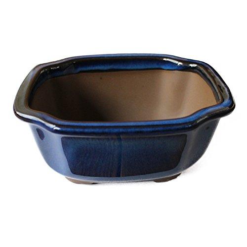 Bonsai Pot Ceramic Mokko (Quince) Shape Glazed (6.5