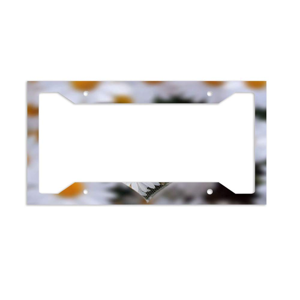 Glossy Black License Plate Frame I HEART SANTA CLAUS Auto Accessory
