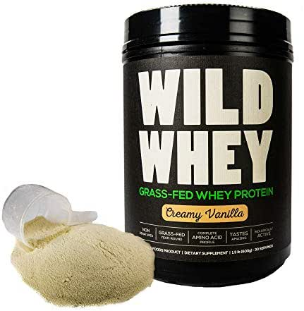 Grass-Fed Whey Protein, Cold Process, Low Carb, Keto Friendly, Non-Denatured, GMO-Free Protein Concentrate Made Directly from Grass-Fed Milk (Not Cheese) (600g - 1.32 Pound, Creamy Vanilla)